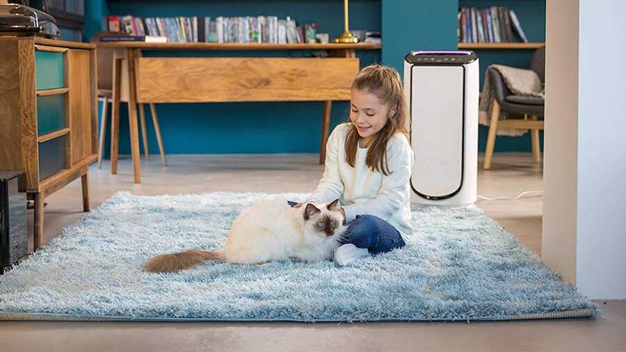 Le purificateur d'air Intense Pure Air Connect XL PU6080F0 ROWENTA